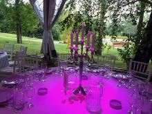 Кетъринг: Сватба в ботаническата градина - 23.08.2014 г