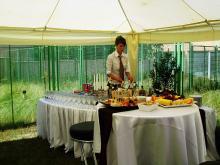 Кетъринг: Откриване на офис, 40 гости - 10.06.2009г.
