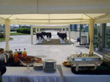 Кетъринг: Работен обяд OMV-Илиянци, 25 гости - 13.05.2009г.