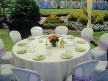 Кетъринг: Сватба в с. Рибарица ( Евъргрийн Палас ), 180 гости - 14.06.2009г.