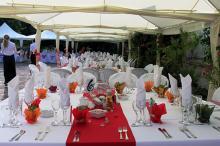 Кетъринг: Сватба в Университетска Ботаническа Градина - София, 120 гости - 17.07.2010г.