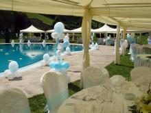 Кетъринг: Сватба в с. Рибарица ( Евъргрийн Палас ), 130 гости - 21.06.2009г.