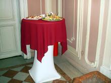Кетъринг: Коктейл в Етнографски институт и музей, 90 гости - 23.11.2009г.