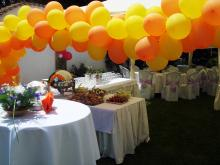 Кетъринг: КАбитуриентски бал в кв. Малашевци, 35 гости - 24.05.2009г.