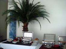 Кетъринг: Работен обяд в студиото на Харбър Айлънд Рекърдс, 35 гости - 28.01.2010г.