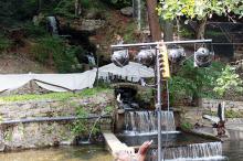 Кетъринг: Оборудване под наем в комплекс Езерото с. Костенец - 28.08.2010г.