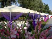Кетъринг: Сватба на  басейн Чери, 90 гости - 24.08.2008г.