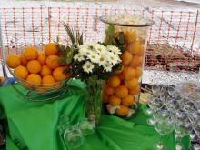 Кетъринг: Първа копка Winslow Gardens, 150 гости - 23.04.2008г