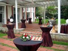 Кетъринг: Коктейл в резиденцията на Боливарска република Венецуела, 120 гости - 19.04.2010г.