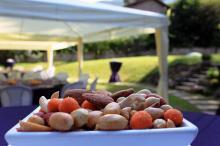 Кетъринг: Рожден ден в частен дом - кв. Драгалевци, 40 гости - 28.07.2010г.